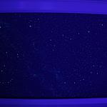 Barrel ceiling with black lights on