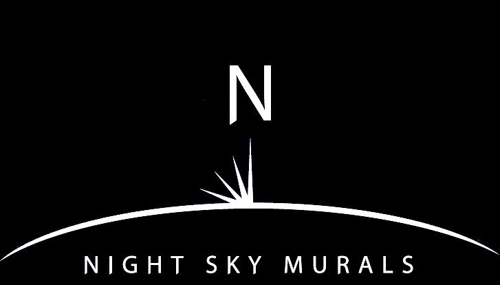 Gallery 1 Click Night Sky Murals